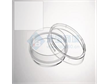 艾本德/ Eppendorf 细胞培养皿0030702115