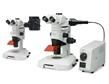 OLYMPUS奥林巴斯SZX10体视显微镜 立体显微镜/解剖镜