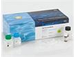 11858882001-HP Viral RNA Kit