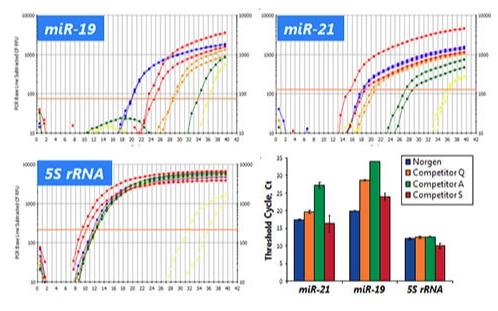 microRNA-3.png